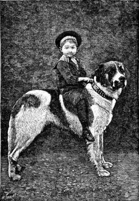 Boy on Dog