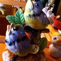 blurry blue birds