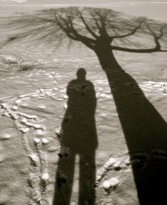 My Digital Photography