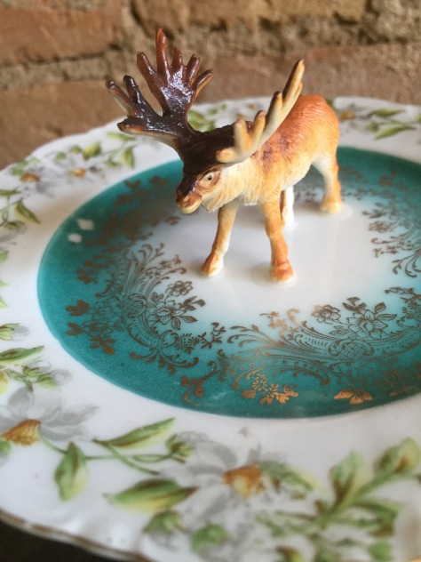 Save the Moose Ring Dish © Mara Lee